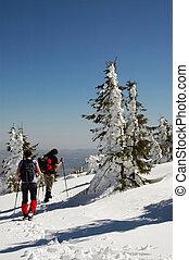 mooi, bergen, winter, wandelende, mensen