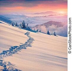 mooi, bergen., winter, zonopkomst