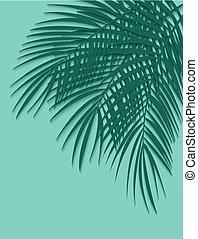 mooi, blad, illustratie, achtergrond., vector, palm