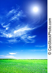 mooi, blauwe , tarwe, hemel, sun., groene