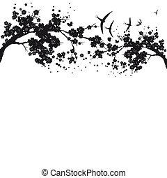 mooi, bloem, silhouette, tak, witte