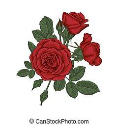 mooi, bouquetten, leaves., arrangement., rozen, floral, rood