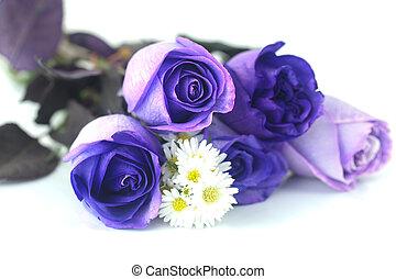 mooi, bouquetten, viooltje, chamomiles, rozen