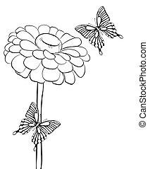 mooi, butterflies., zwart-wit, bloem