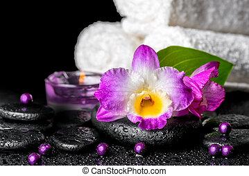 mooi, dendrobium, blad, groene achtergrond, spa, candl,...