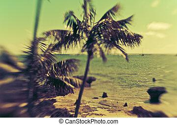 mooi, eiland, paradijs