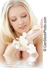 mooi en gracieus, blonde , met, het wit nam toe, kroonbladen, in, water