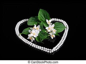 mooi, fris, jasmijn, bloem, en, reflectie, op, black , met, hart, van, parel