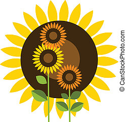 mooi, gele, zonnebloem