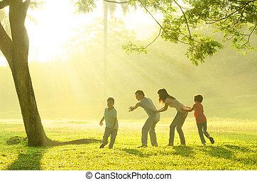 mooi, gezin, vreugde, park, morgen, aziaat, gedurende, spelend