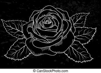 mooi, grijs, schets, roos, stippen, zwarte achtergrond, witte