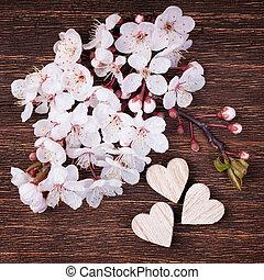 mooi, hartjes, nicely, voorjaarsbloesem, geplaatste, kers, houten