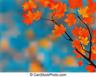 mooi, herfst, achtergrond.