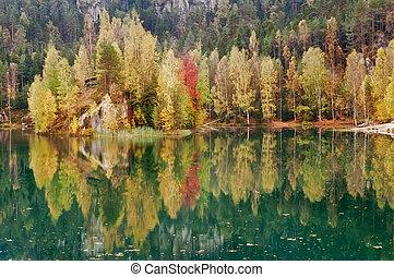 mooi, herfst, meer