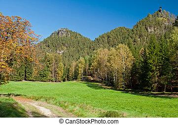 mooi, herfst, natuur