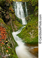 mooi, herfst, waterval