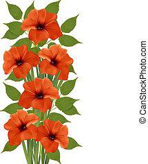 mooi, illustration., flowers., vector, achtergrond, sinaasappel, vakantie