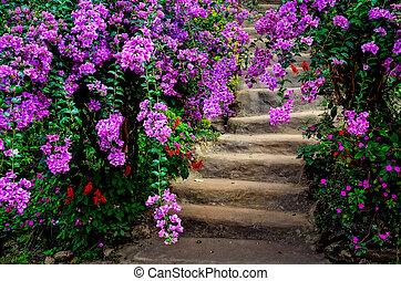 mooi, kleurrijke bloemen, en, tuin, trap