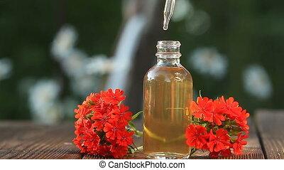 mooi, olie, achtergrond, houten, catchfly, fles, essentieel