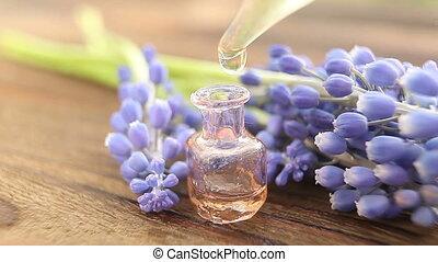 mooi, olie, bloem, fles, muscari, tafel, essentieel