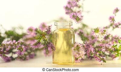 mooi, olie, calluna, achtergrond, fles, witte , essentieel