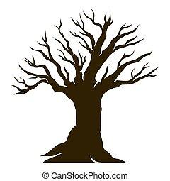 mooi, olive, oude boom