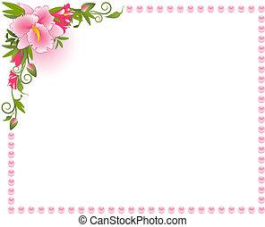mooi, orchidee, op, de, achtergrond