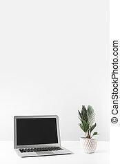 mooi, plant, draagbare computer, blank lichten door, thuis, witte , pot