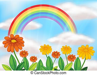 mooi, regenboog, bloemtuin