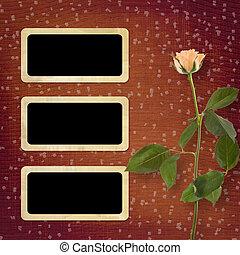 mooi, roos, felicitatie, grunge, achtergrond
