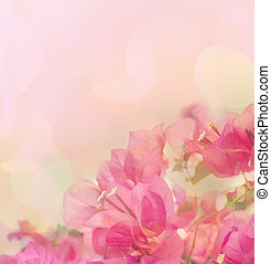 mooi, roze, abstract, flowers., ontwerp, achtergrond, floral rand
