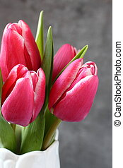 mooi, roze, witte , vaas, tulpen