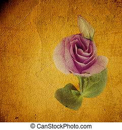 mooi, rozen, prup