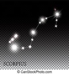 mooi, scorpius, meldingsbord, helder, sterretjes, zodiac
