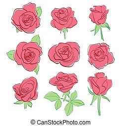 mooi, set, -, rozen, vector, rood