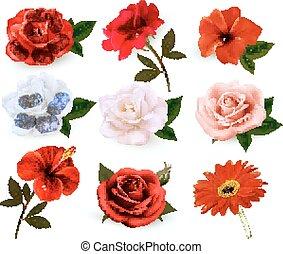 mooi, set, vrijstaand, achtergrond., vector., witte bloemen