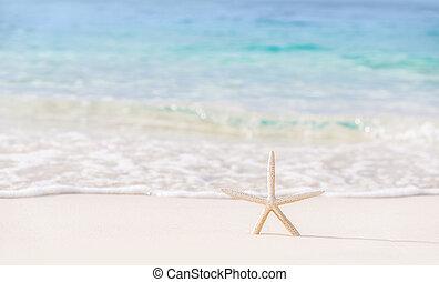 mooi, strand, achtergrond