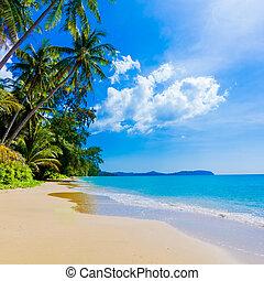 mooi, tropisch strand, zee