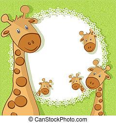 mooi, twee, kaart, giraffes