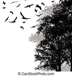 mooi, vliegen, bos, bomen, vogels