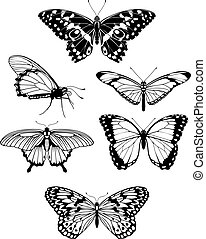 mooi, vlinder, silhouettes, stylised, schets