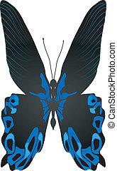 mooi, vlinder, vector