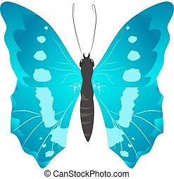 mooi, vrijstaand, butterfly.