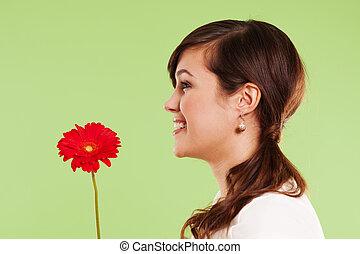 mooi, vrouwenholding, rode bloem
