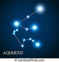 mooi, waterman, meldingsbord, helder, vector, sterretjes, illust, zodiac