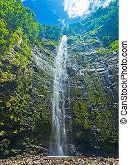 mooi, waterval, sterke drank, hawaii