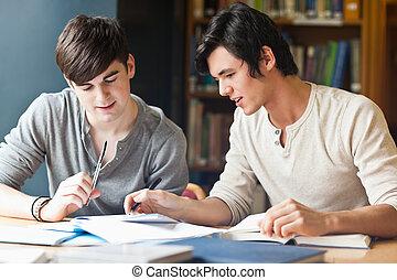 mooi, werkende , student, essay