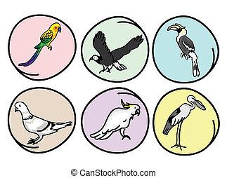 mooi, wild, set, vogels, illustratie