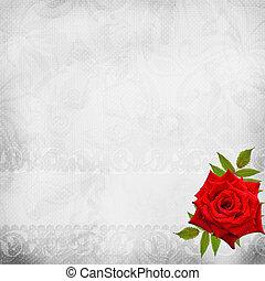 mooi, witte achtergrond, trouwfeest