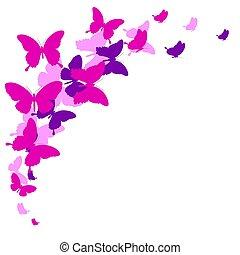 mooi, witte , vlinder